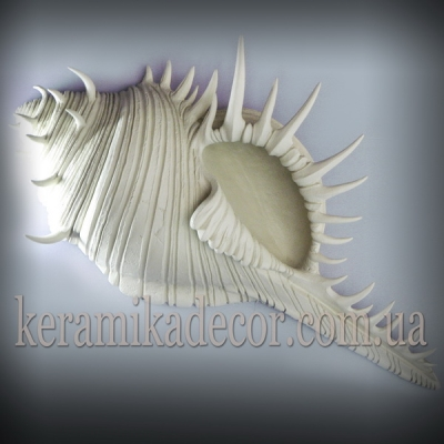 Керамическая морская раковина для декора купить Киев