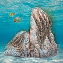 """Аква ландшафт """"Тропический риф"""" L-08"""