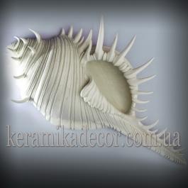 Керамическая морская раковина r-11