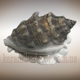 Керамическая морская раковина r-19